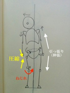 姿勢観察3