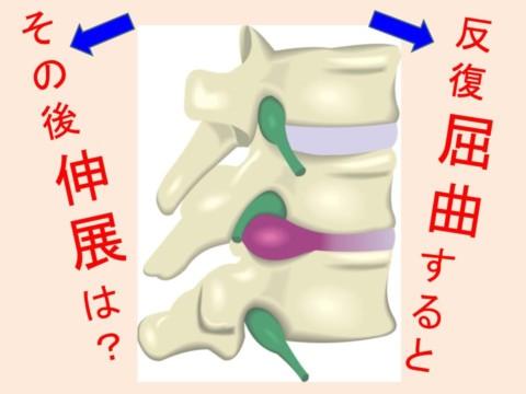 脊柱の反復屈曲は、脊柱の伸展を改善させる??No143