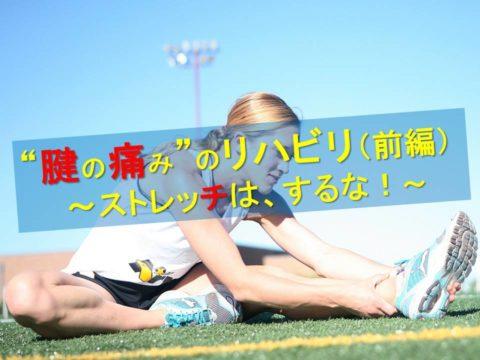 """""""腱の痛み""""のリハビリにおける注意点(前編)~ストレッチはするな!~No156"""