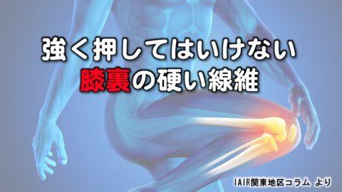 強く押してはいけない膝裏の硬い線維