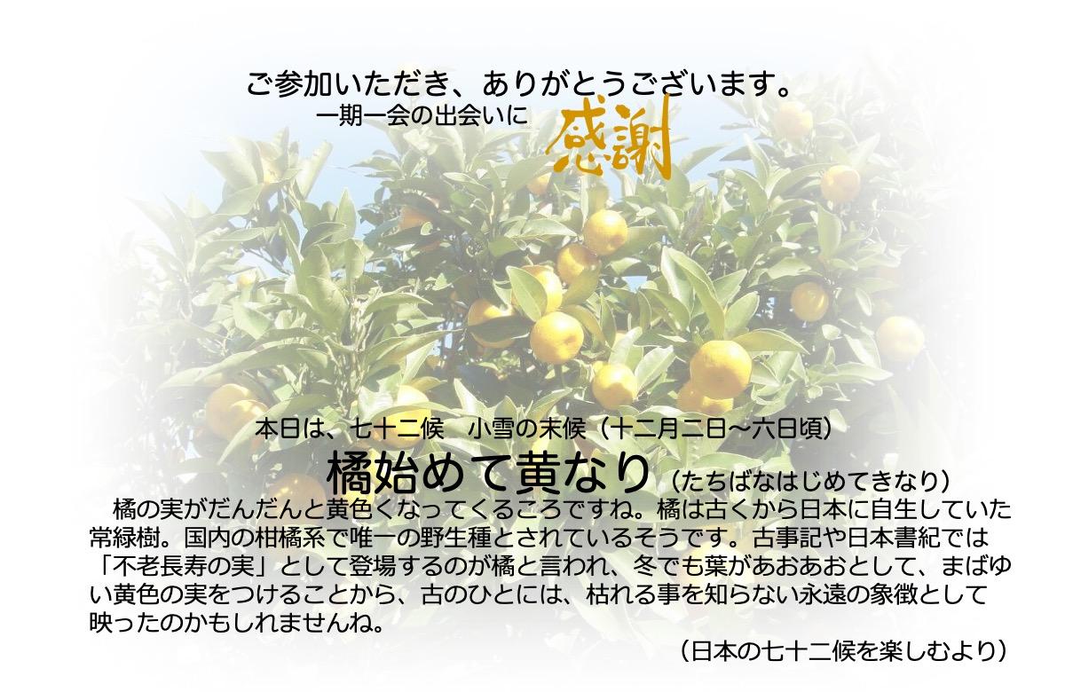 橘始めて黄なり