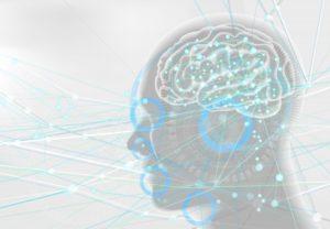 脳科学作業療法