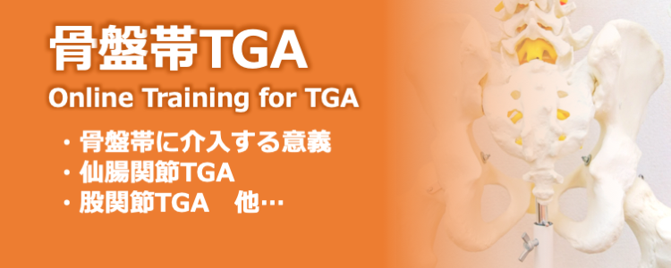 骨盤帯TGAオンライントレーニング
