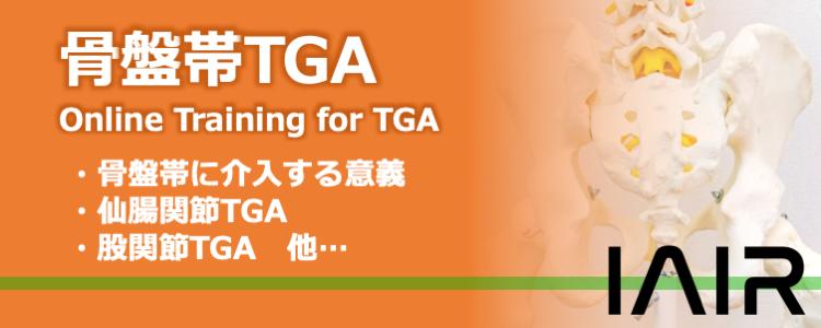 骨盤帯TGA_OL