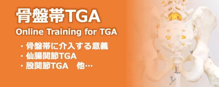 骨盤帯の組織滑走法TGA