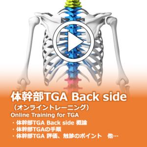 体幹部TGA Back side