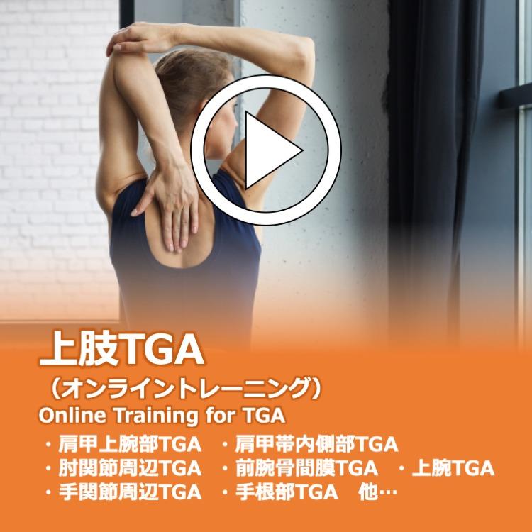 上肢TGA