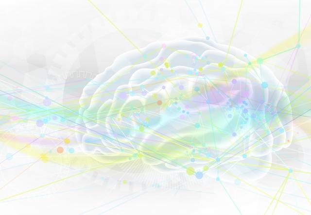 脳の生理学